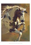 Wild Heart Poster von Carolyne Hawley