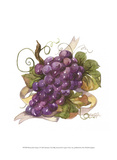 Watercolor Grapes I Poster von Jerianne Van Dijk