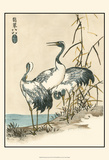 Oriental Crane II Poster by  Vision Studio
