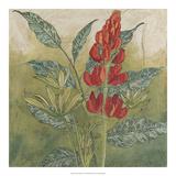 Crimson Tropical II Giclee-vedos tekijänä Megan Meagher
