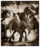 The March Giclee Print by David Drost