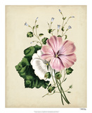 Nature's Romance V Giclee Print by  Vision Studio