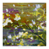 Abstract Leaf Study II Giclee Print by Sisa Jasper