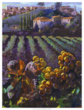 View of Tuscany Giclee Print by Clif Hadfield