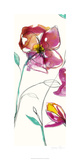 Inked Floral I Limited Edition by Jennifer Goldberger
