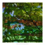 Abstract Leaf Study IV Giclee Print by Sisa Jasper