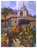 Vineyard at San Miguel Giclee Print by Clif Hadfield