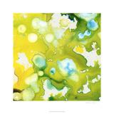 Satellite II Limited Edition by Jennifer Goldberger