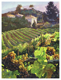 Siena Harvest Giclee Print by Clif Hadfield