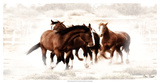 Blazing Herd III Giclee Print by David Drost