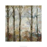 Aural Arbor I Premium Giclee Print by Jennifer Goldberger