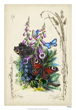 Victorian Butterfly Garden VI Giclee Print by  Vision Studio