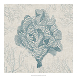 Coral Motif IV Giclee Print by  Vision Studio