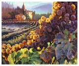Tuscany Harvest Giclee Print by Clif Hadfield