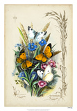 Victorian Butterfly Garden I Giclee Print by  Vision Studio