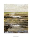 Organic Landscape IV Premium Giclee Print by Ferdos Maleki