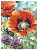 Vivid Poppies II Giclee Print by Carolee Vitaletti