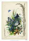 Victorian Butterfly Garden VIII Giclee Print by  Vision Studio