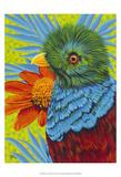 Bird in the Tropics II Prints by Carolee Vitaletti