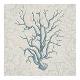 Coral Motif II Giclee Print by  Vision Studio
