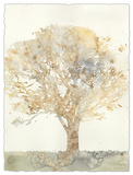 Chloe's Tree II Premium Giclee Print by Megan Meagher