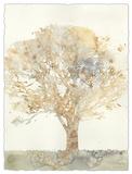 Chloe's Tree II Premium Giclee Print by Megan Meagher