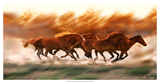 Blazing Herd II Giclee Print by David Drost