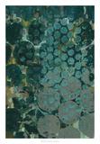 Callais II Giclee Print by Chariklia Zarris