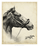 Whirlaway Giclee Print by R.H. Palenske
