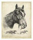 Gallant Fox Wydruk giclee autor R.H. Palenske