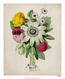 Spring Posy II Giclee Print by Winslow Peachy