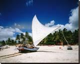 Sailing boat Jangada at Combuco Beach near Fortaleza, Ceara, Brazil Impressão em tela esticada