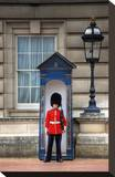 Royal Guard in front of Buckingham Palace, London Stretched Canvas Print