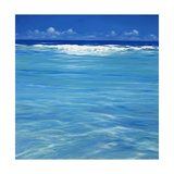 Over the Reef Giclee Print by Derek Hare