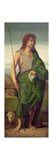 St. John the Baptist Giclee Print by Jacopo Palma