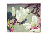 Magnolia, c.1925 Giclee Print by Mabel Royds
