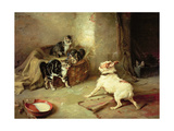Kittens and Dog, 1881 Giclee Print by Walter Hunt