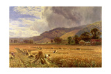 Landscape: Harvesting in the Thames Valley Giclee Print by George Vicat Cole