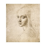 Study for the Head of a Girl, c.1483 Giclee Print by  Leonardo da Vinci