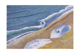 Surfing Portland Style, 2006 Giclee Print by Liz Wright
