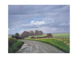 The Imba Range Path Above Westbury, 2008 Giclee Print by Peter Breeden