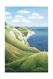 The White Nothe, 1999 Giclee Print by Liz Wright