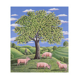 Pigs under an Oak Tree, 1985 Giclee Print by Liz Wright