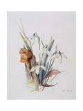 Snowdrops, 2001 Giclee Print by Rebecca John