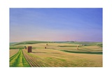 The Wessex Ridgeway Path as it Crosses Cotley Hill. Evening Light II, 2008 Giclee Print by Peter Breeden