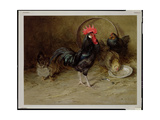 The Rooster Giclee Print by Edwin John Alexander