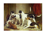 Portrait of Favorite Foxhounds Giclee Print by Thomas Woodward