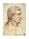 Head of a Man in Profile, c.1506-8 Giclee Print by  Leonardo da Vinci