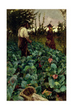 Cabbage Garden, 1877 Giclee Print by Arthur Melville