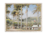 Grenada, West Indies Giclee Print by Albert Goodwin